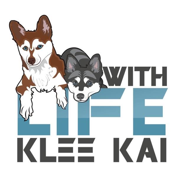 Life With Klee Kai