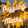 Puzzling Maths artwork