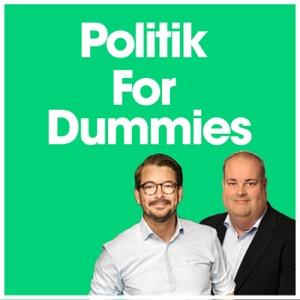 Politik for Dummies