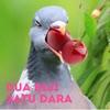 Dua Biji Satu Dara Podcast
