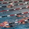 History of swimming  artwork