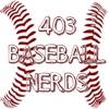 403 Baseball Nerds  artwork