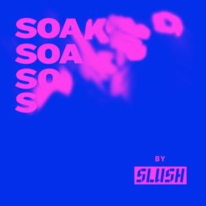 Soaked by Slush