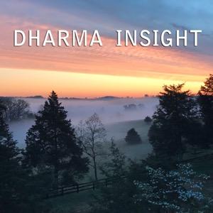 Dharma Insight   Insight Meditation Community of Charlottesville