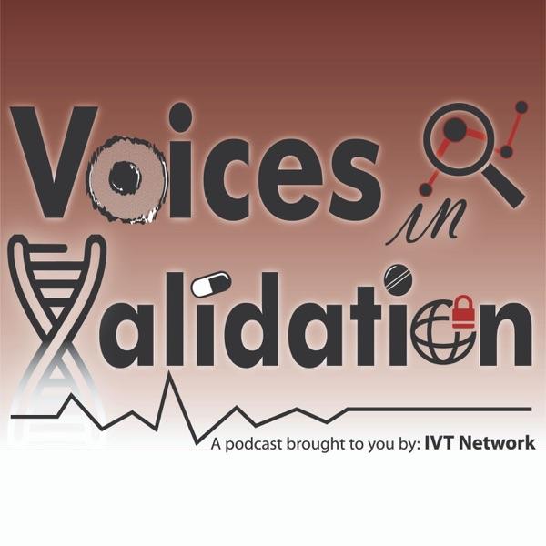 Voices In Validation Artwork