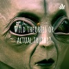 Wild theories or actual truths? artwork