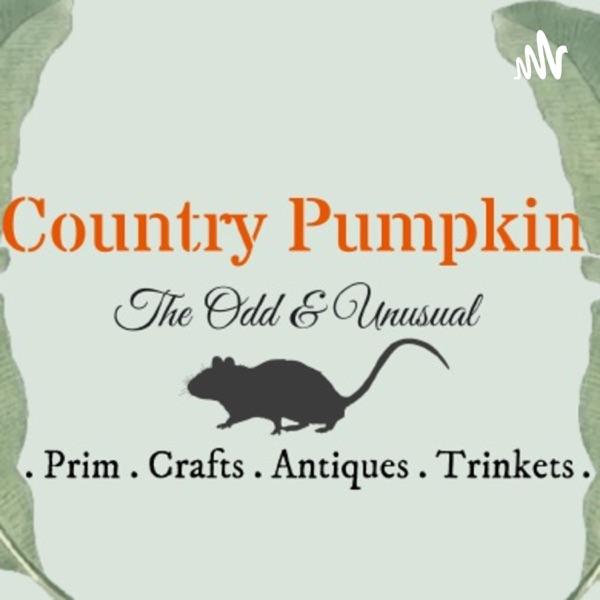 Country Pumpkin - Prim, Cottage Core Décor, The Odd and Unusual Artwork