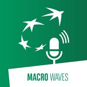 Macro Waves