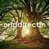 Worlddirectinfo artwork