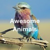 Awesome Animals: The Worst Pet artwork