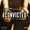 Convicted: Across Borders artwork