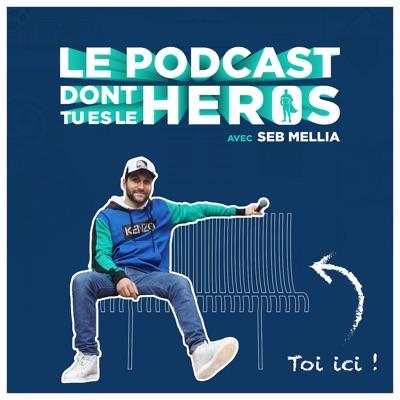 Le Podcast Dont Tu Es Le Héros:Seb Mellia