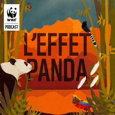 L'Effet Panda