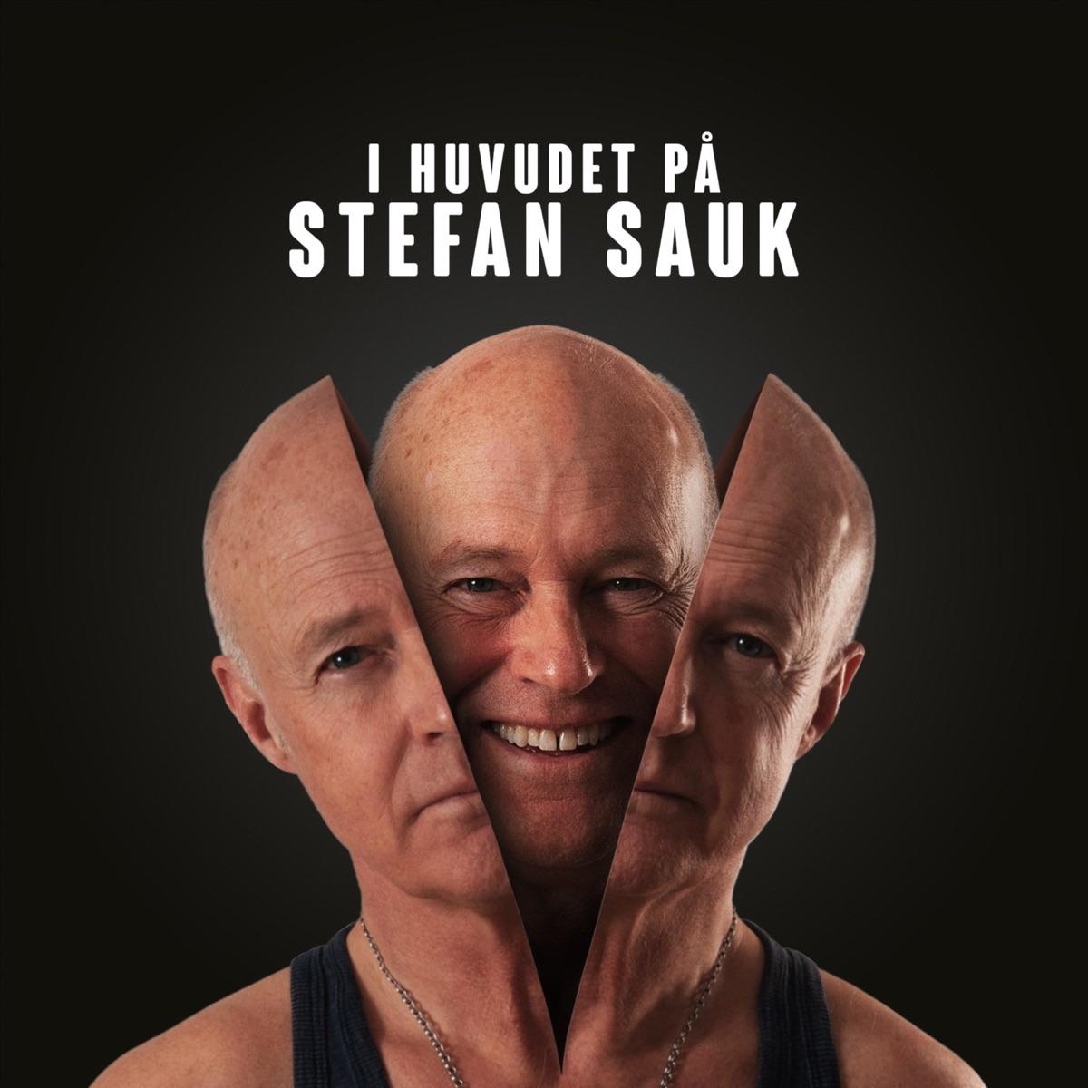 I huvudet på Stefan Sauk