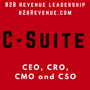 B2B Revenue Leadership and Growth Hacker for B2B Companies - Sales - Marketing - Selling - Success - SaaS