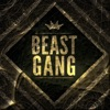 Beast Gang - Movies and TV Shows artwork