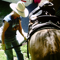 MULE TALK! With Cindy K Roberts podcast