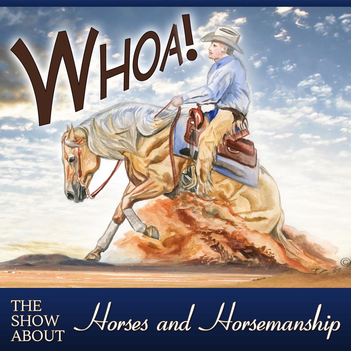 Whoa Podcast About Horses Horsemanship