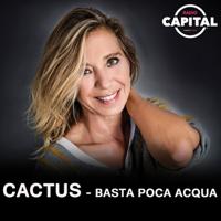 Cactus - Basta poca acqua podcast