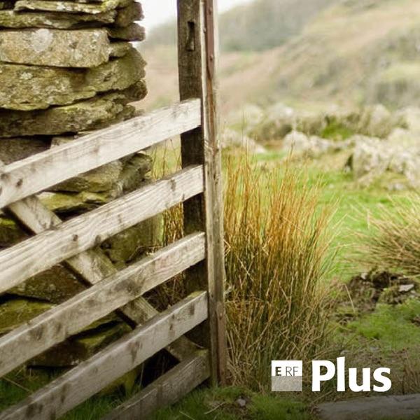 ERF Plus - Wort zum Tag (Podcast)