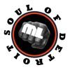 ML Soul of Detroit artwork