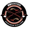 Anaheim Calling: for Anaheim Ducks fans artwork