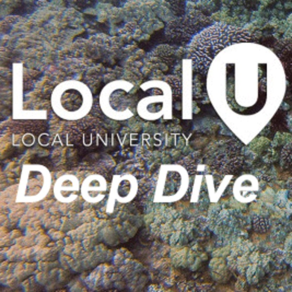 Deep Dive into Local Search & SEO