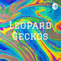 Leopard Geckos podcast