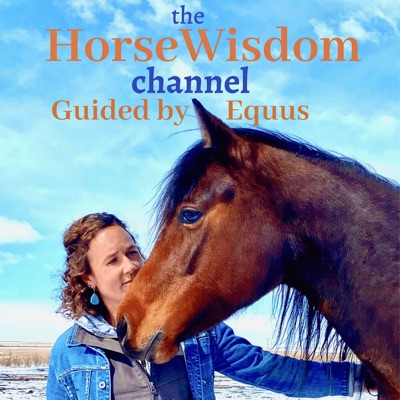 the HorseWisdom Channel Guided by Equus