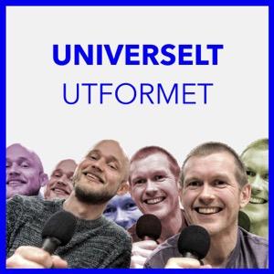Universelt utformet