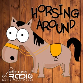 Horsing Around All About Horses Of Course Horse Podcast Pets Animals On Pet Life Radio Petliferadio Com