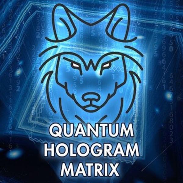 Psychic And Healer Barbara Jean Lindsey – Quantum Hologram