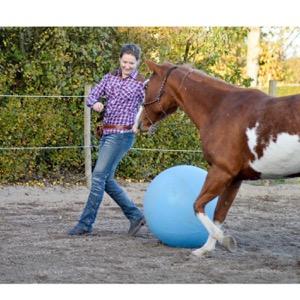 Hestetræning med hjerte og hjerne