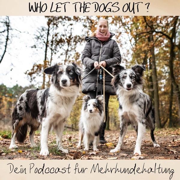 Who let the dogs out? Dein Podast für Mehrhundehaltung