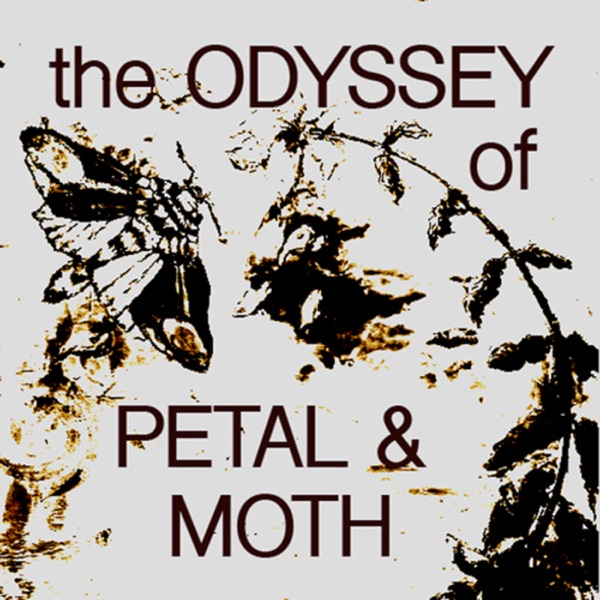 The Odyssey of Petal & Moth - tales from an underdog film