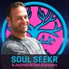 Soul Seekr artwork