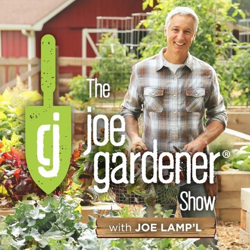 Cover image of The joe gardener Show - Organic Gardening - Vegetable Gardening - Expert Garden Advice From Joe Lamp'l