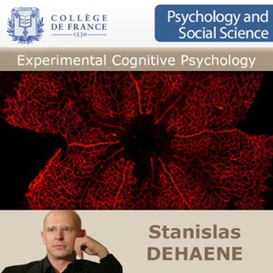 Experimental Cognitive Psychology