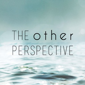 The Other Perspective