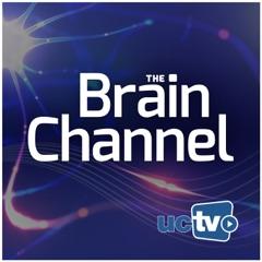 Brain Channel (Video)