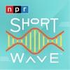 Short Wave artwork