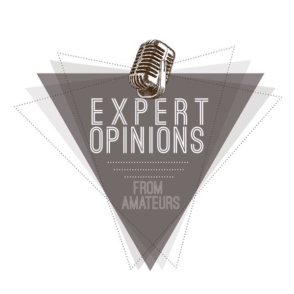 Expert Opinions From Amateurs