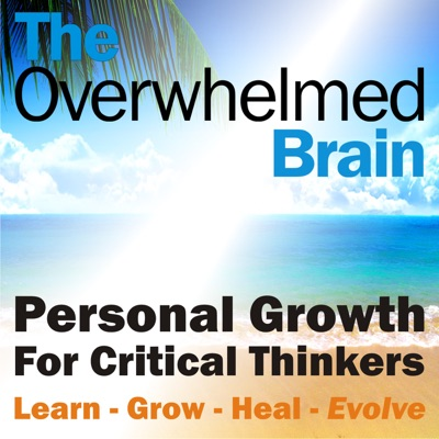 The Overwhelmed Brain:Paul Colaianni