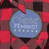 Secret Feminist Agenda artwork