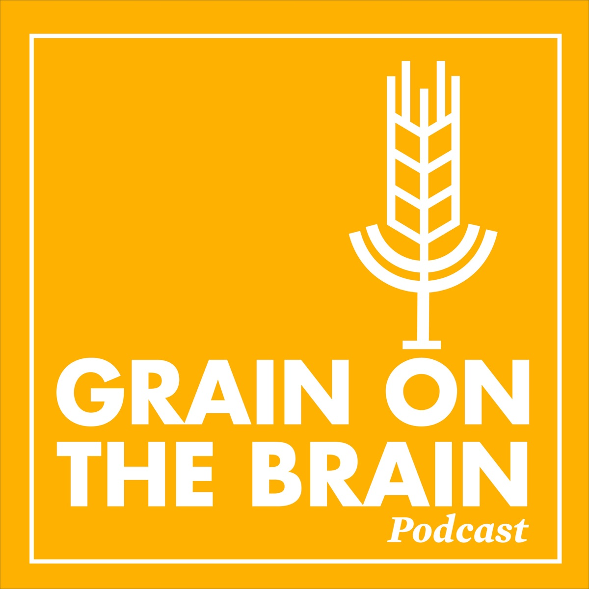 Grain on the Brain
