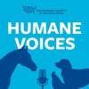 Humane Voices artwork