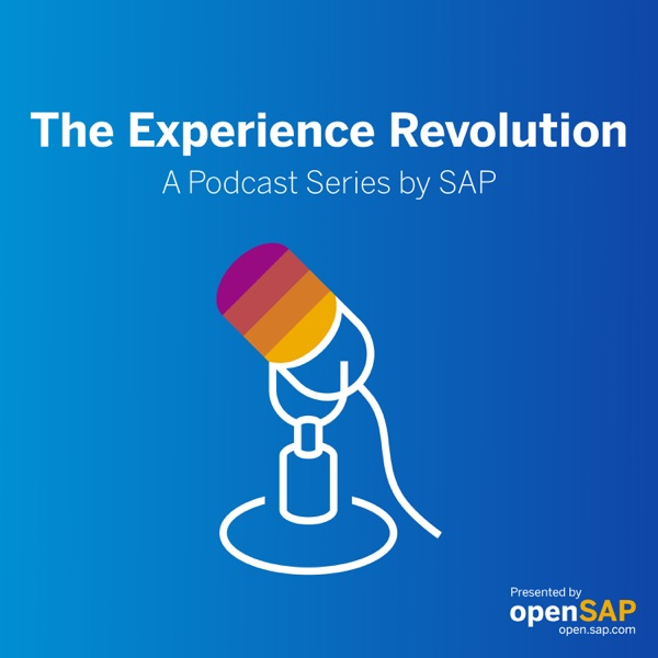 The Experience Revolution podcast show image