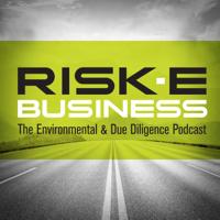RISK-E-Business Podcast podcast