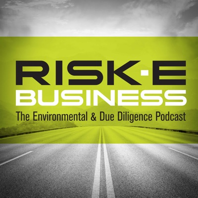 RISK-E-Business Podcast