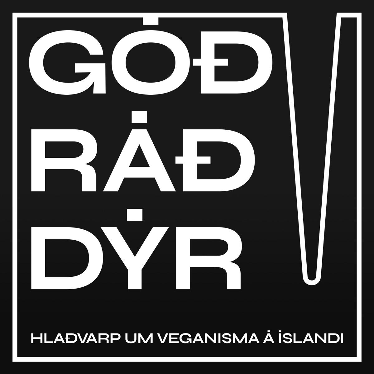 Góð ráð dýr